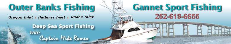 North Carolina Sport Fishing Charters